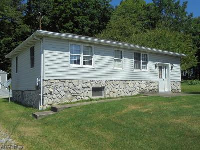 Ebensburg Single Family Home For Sale: 3487 New Germany Road
