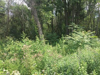 Altoona Residential Lots & Land For Sale: 812-818 E Bell Avenue