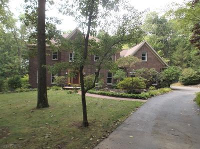 Hollidaysburg Single Family Home For Sale: 197 Stonehedge Road