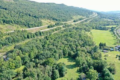 Blair County Residential Lots & Land For Sale: 562 Downs Lane Ext