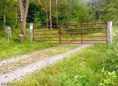 Blair County Residential Lots & Land For Sale: Quiet Hollow Road