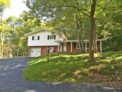 Tyrone Single Family Home For Sale: 1118 Poplar Avenue