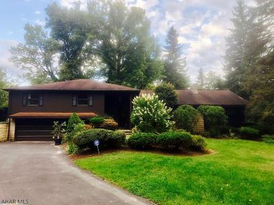 Hollidaysburg, Duncansville Single Family Home For Sale: 346 Cypress St