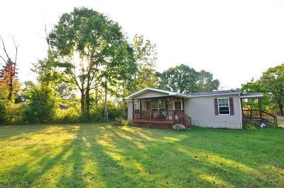 Hollidaysburg, Duncansville Single Family Home For Sale: 308 Edna St.