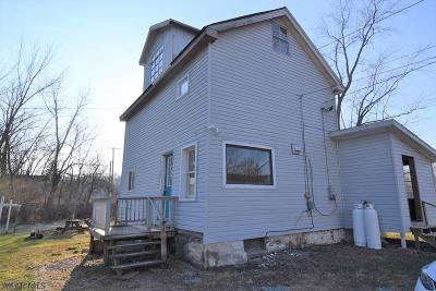 Hollidaysburg, Duncansville Single Family Home For Sale: 203 Upper Reese Road