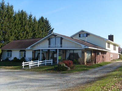 Venango County Single Family Home For Sale: 3862 State Rt#8