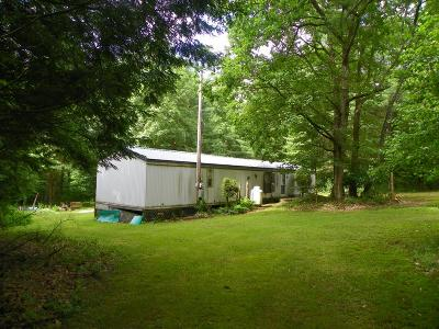 Forest County Single Family Home For Sale: 764 Guitonville Road