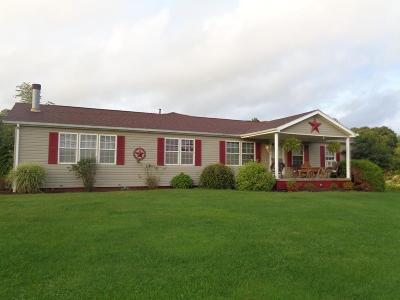 Strattanville Single Family Home For Sale: 18213 Rt 322