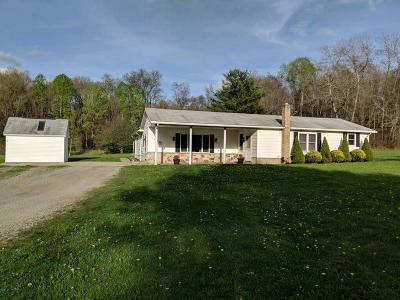 Clarion County Single Family Home For Sale: 52 Sparkys Lane