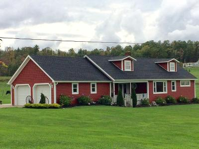 Clarion County Single Family Home For Sale: 1772 Huefner Springs Road