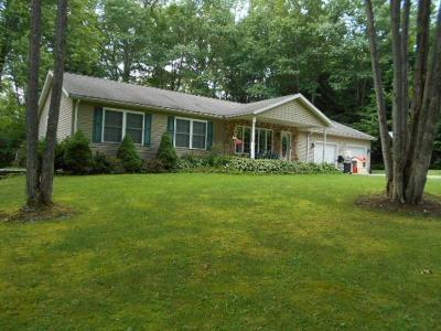 Clarion County Single Family Home For Sale: 136 Tubbs Lane