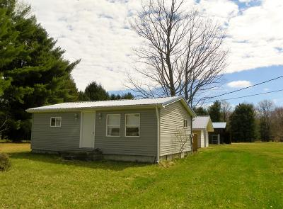 Forest County Single Family Home For Sale: 3918 Route 899