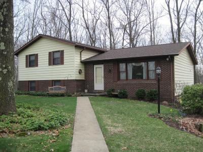 Venango County Single Family Home For Sale: 65 Horne Lane