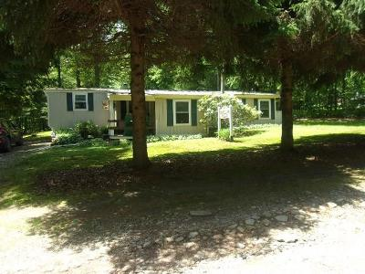 Forest County Single Family Home For Sale: 158 Blackbeary Lane
