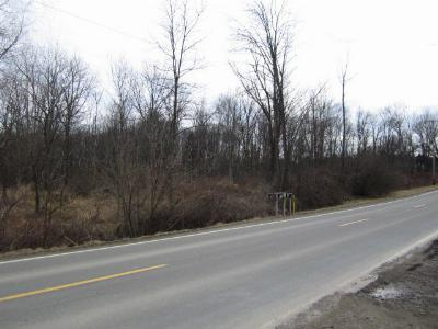 Towanda Commercial For Sale: 20470 Route 187