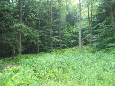 Laporte Residential Lots & Land For Sale: 8 Hilary Lane