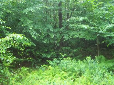 Laporte Residential Lots & Land For Sale: 22 Hilary Lane