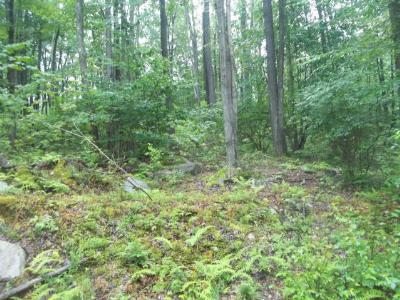 Laporte Residential Lots & Land For Sale: 24 Hilary Lane
