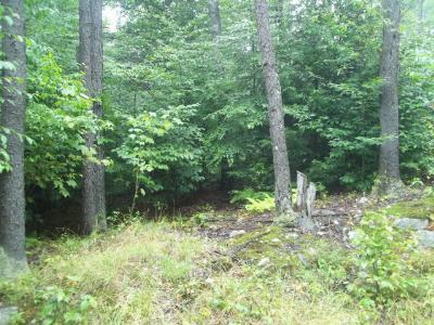 Laporte Residential Lots & Land For Sale: 26 Hilary Lane