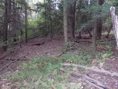 Laporte Residential Lots & Land For Sale: Lot 16 Route 154