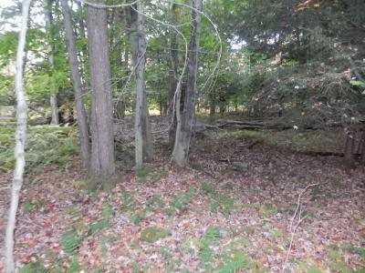 Laporte Residential Lots & Land For Sale: Lot 14 Woodland Drive