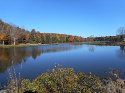 Athens Residential Lots & Land For Sale: 463 Struble Road