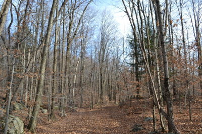 Dushore Residential Lots & Land For Sale: Old Bernice Rd