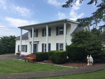 Towanda Commercial For Sale: 21642 Route 187