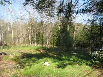 Dushore Residential Lots & Land For Sale: 821 Horseshoe Road