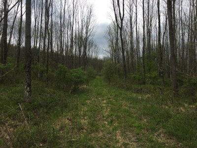 Towanda Residential Lots & Land For Sale: 01 Vfw Road
