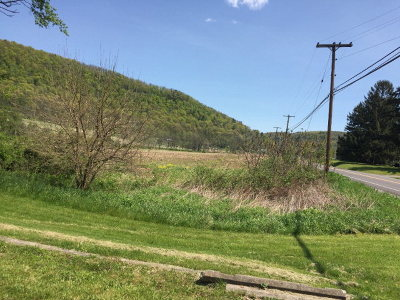 Wysox Commercial For Sale: 23101 Route 187