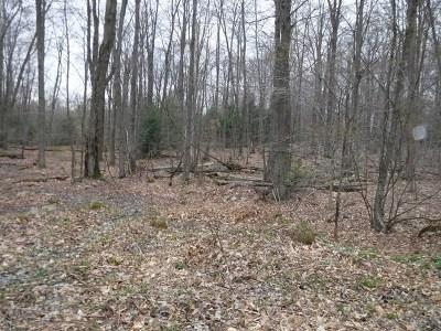 Dushore Residential Lots & Land For Sale: Lot 41 Miller Road
