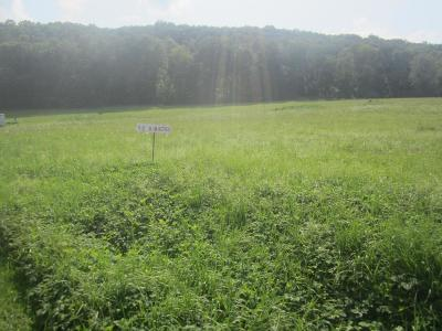 Athens Residential Lots & Land For Sale: Lot 11 Idle Wheels Lane