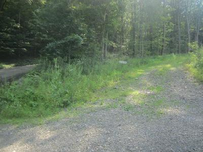Athens Residential Lots & Land For Sale: Lot 16 Idle Wheels Lane