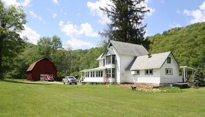 Galeton Single Family Home For Sale: 13 Crippen Run Rd