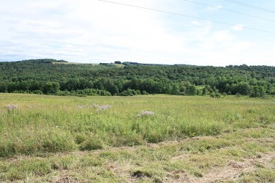 Middlebury Center Residential Lots & Land For Sale: Lot 3 Thornbottom Rd
