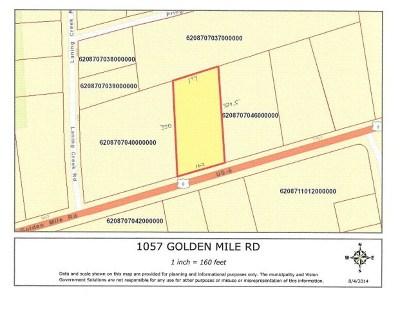 Towanda Commercial For Sale: 1057 Golden Mile Rd