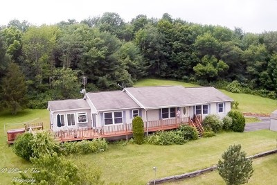 Wysox Single Family Home For Sale: 702 Claverack Road
