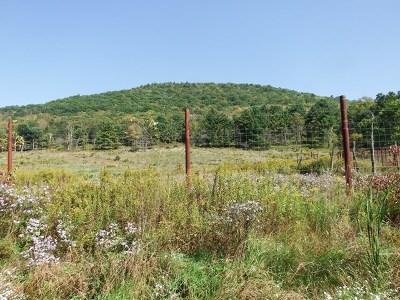 Wellsboro Residential Lots & Land For Sale: Maier Lane