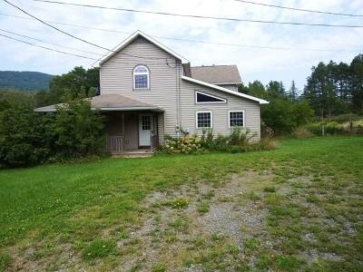 Wellsboro Single Family Home For Sale: 67 Maier