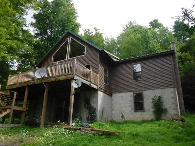 Dushore Single Family Home For Sale: 141 Pleasant Valley Road