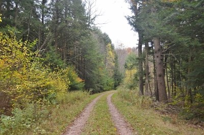 Dushore Residential Lots & Land For Sale: Lot 6 Chase Lane