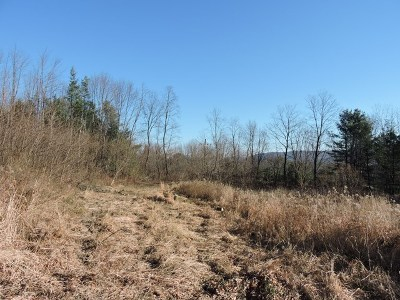 Towanda Residential Lots & Land For Sale: Burlington Tpke