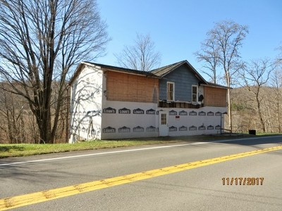 Dushore Single Family Home For Sale: 15820 Route 87
