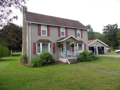 Blossburg Single Family Home For Sale: 123 S Williamson Rd