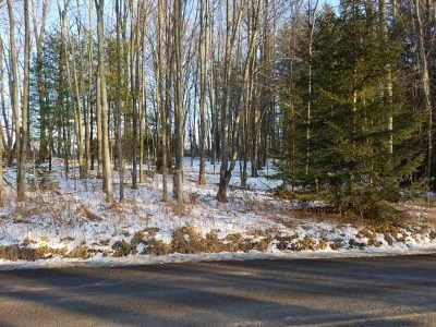 Dushore Residential Lots & Land For Sale: 7 Ambrosious Rd