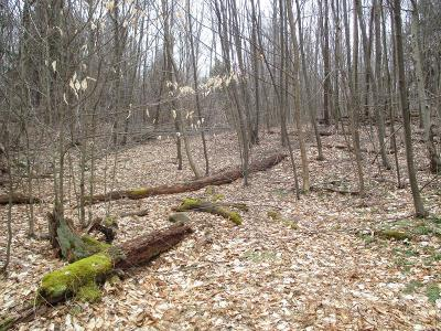 Laporte Residential Lots & Land For Sale: Lot 7, 0 Forest Drive