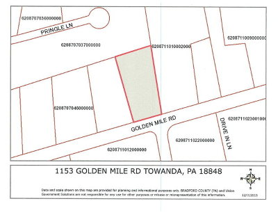 Towanda Commercial For Sale: 1153 Golden Mile Rd