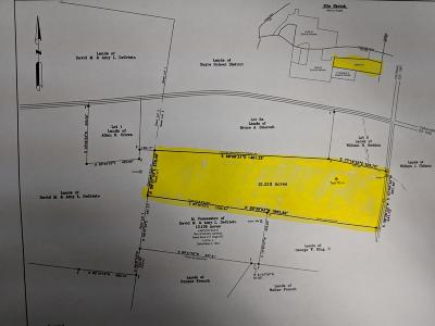 Athens Residential Lots & Land For Sale: 21 Acres Cotton Hollow Road
