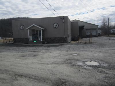 Canton Commercial For Sale: 510 Route 414